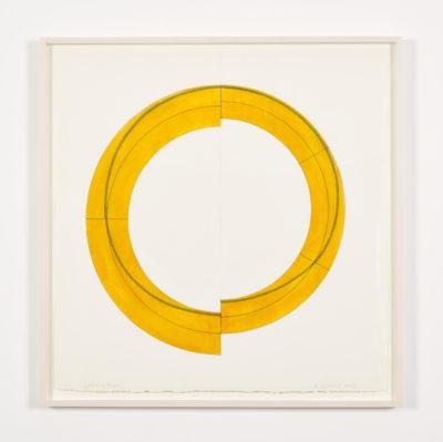 Split Ring Image